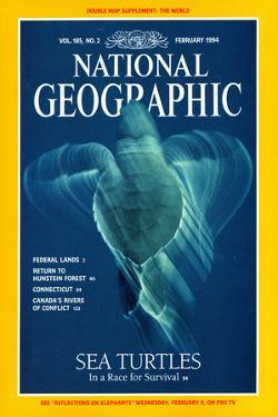 Cover of the February, 1994 National Geographic Magazine by Bill Curtsinger