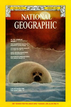 Cover of the January, 1976 National Geographic Magazine by Bill Curtsinger