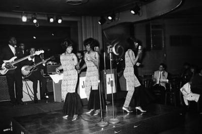 Martha Reeves, The Vandellas by Bill Gillohm