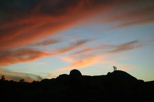 Camera Phone Photographers at Sunset in Joshua Tree National Park by Bill Hatcher