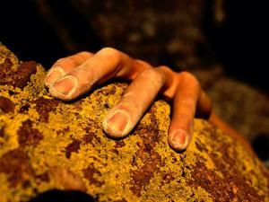 Close up of a Rock Climbers Hand by Bill Hatcher