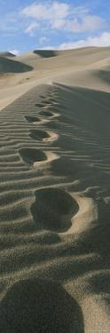 Footprints in the Sand by Bill Hatcher