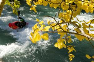Kayaking on the Kanaskis River by Bill Hatcher