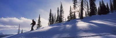 Woman Enjoys Backcountry Skiing in the Lizard Head Wilderness, Lizard Head Wilderness, Colorado by Bill Hatcher