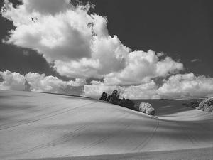 Land and Sky II B&W by Bill Philip