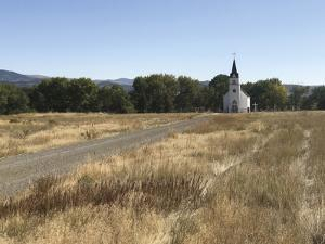 Rural Riches by Bill Philip