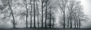 Silver Mists III by Bill Philip