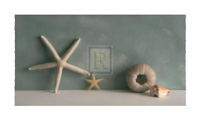 Starfish I by Bill Philip