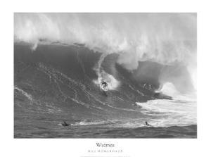 Waimea by Bill Romerhaus