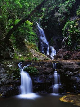 Elabana Falls by Bill Ross