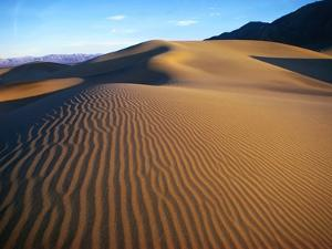 Sand Dunes in Death Valley by Bill Ross