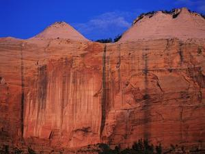 Streaked Wall and Beehives at Sunrise by Bill Ross