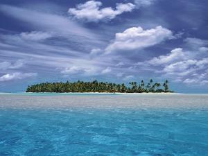 Tropical Island by Bill Ross