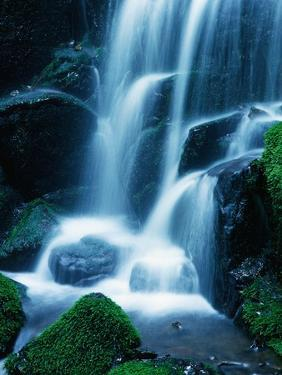 Waterfall in Yosemite National Park by Bill Ross
