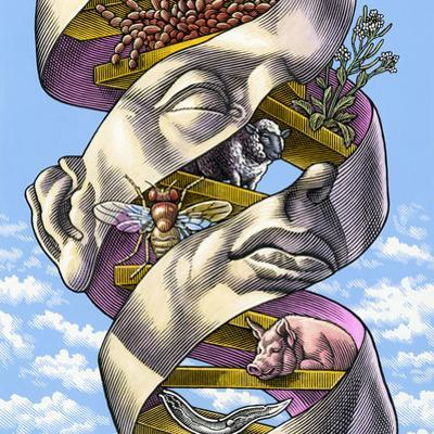 DNA In All Living Things, Artwork by Bill Sanderson