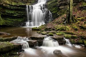 Scaleber Force Waterfall, Yorkshire Dales, Yorkshire, England, United Kingdom, Europe by Bill Ward