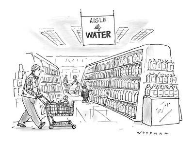 Little Dutch boy at supermarket holds his finger against a bottle, in the ? - New Yorker Cartoon