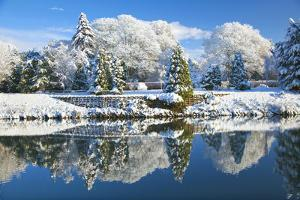 Bute Park in snow, Cardiff, Wales, United Kingdom, Europe by Billy Stock