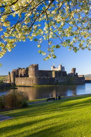 Caerphilly Castle, Gwent, Wales, United Kingdom, Europe by Billy Stock