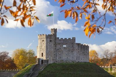 Norman Keep, Cardiff Castle, Cardiff, Wales, United Kingdom, Europe by Billy Stock
