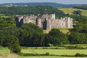 Raglan Castle, Monmouthshire, Wales, United Kingdom, Europe by Billy Stock