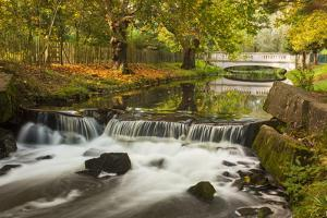 Roath Park, Cardiff, Wales, United Kingdom, Europe by Billy Stock