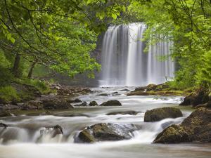 Sgwd yr Eira Waterfall, Brecon Beacons, Wales, United Kingdom, Europe by Billy Stock