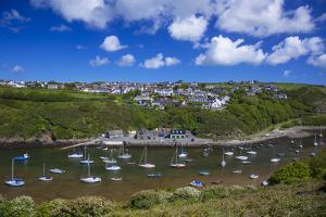 Solva Harbour, Pembrokeshire, Wales, United Kingdom by Billy Stock