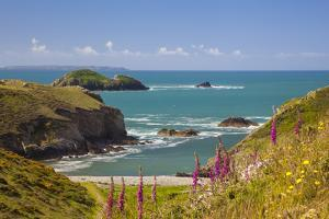 Solva, Pembrokeshire, Wales, United Kingdom by Billy Stock