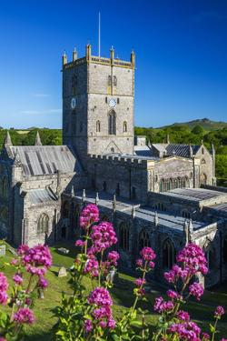 St. Davids Cathedral, Pembrokeshire, Wales, United Kingdom by Billy Stock