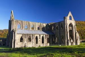 Tintern Abbey, Wye Valley, Monmouthshire, Wales, United Kingdom, Europe by Billy Stock