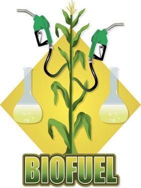 Biofuel Sign