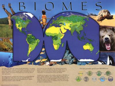 Biomes Overall