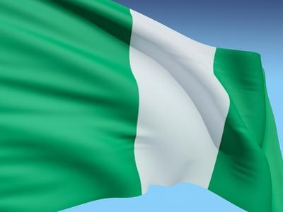 Flag Of Nigeria by bioraven