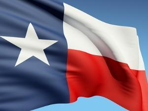 The Texas Flag by bioraven