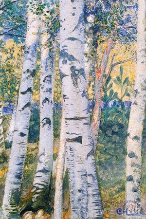 https://imgc.allpostersimages.com/img/posters/birch-trees-1910_u-L-PJLH200.jpg?p=0