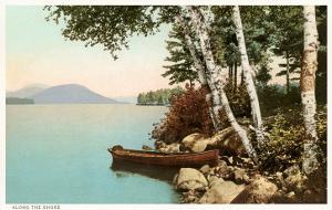Birch Trees by Lake