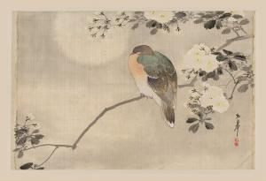 Bird and Cherry Blossoms