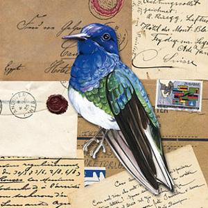 Birds Letters IV