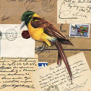 Birds Letters VII