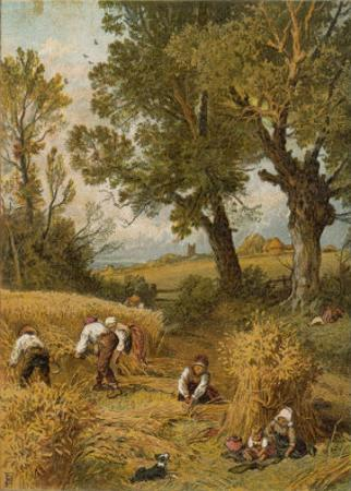 Harvesting with the Sickle in an English Corn-Field Before the Introduction of Reaping Machines