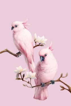 Cockatoos and Magnolia by BJI/Blue Jean Images