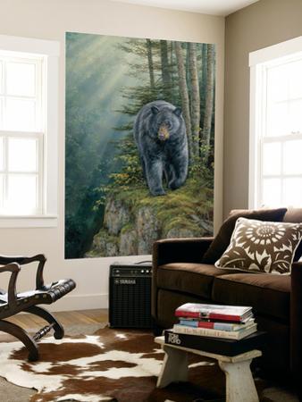 Black Bear (Indoor/Outdoor) Vinyl Wall Mural