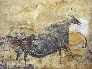 Black Cow Cave Painting at Lascaux