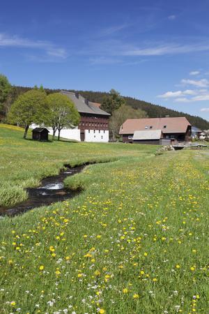 https://imgc.allpostersimages.com/img/posters/black-forest-houses-in-urach-urachtal-black-forest-baden-wurttemberg-germany_u-L-Q1EY39T0.jpg?artPerspective=n