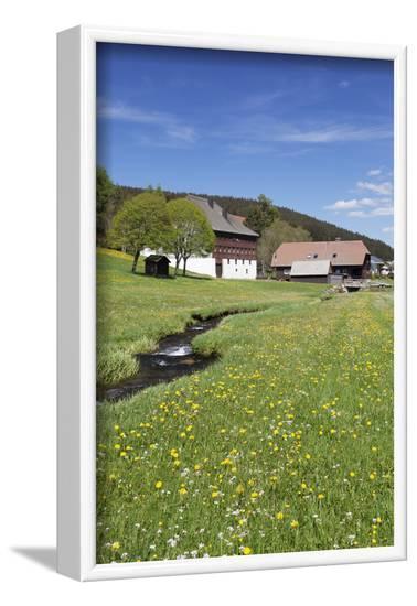Black Forest houses in Urach, Urachtal, Black Forest, Baden-Wurttemberg, Germany-Markus Lange-Framed Photographic Print