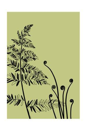 Black Sketched Fern and Plant Stems on Green Background