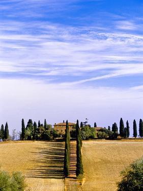 Tuscany landscape by Blaine Harrington