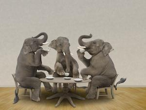 Elephants Having Tea Party by Blend Images - John Lund/Stephanie Roeser