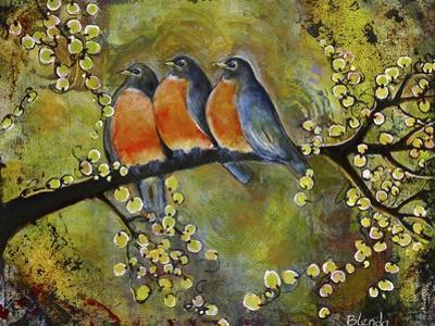 Robin Family by Blenda Tyvoll